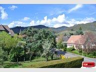 Appartement à louer F2 à Thann - Réf. 4356114