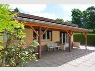 Maison à vendre F3 à Baccarat - Réf. 4654482