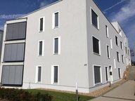Appartement à louer 2 Chambres à Senningerberg - Réf. 4631395