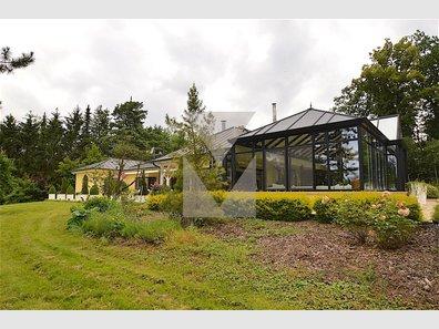 Haus zum Kauf 3 Zimmer in Sanem - Ref. 4623236