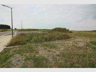 Terrain à vendre à Watrange - Réf. 4222436