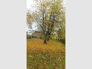 Ground for sale in Mettlach - Ref. 4903221