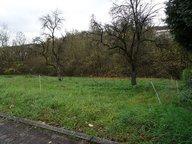 Grundstück zum Kauf in Ralingen - Ref. 4398901