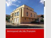 Wohnung zur Miete 2 Zimmer in Bollendorf - Ref. 4865637