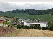 Grundstück zum Kauf in Nittel - Ref. 3914165