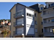 Appartement à louer 1 Chambre à Diekirch - Réf. 4792037