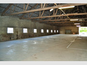 Warehouse for rent in Syren - Ref. 4461813