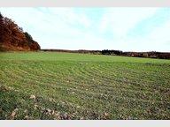 Terrain à Thionville , Moselle - Réf. 4093511
