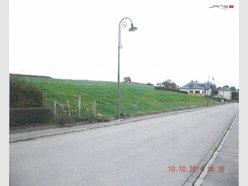 Terrain à vendre à Brachtenbach - Réf. 4130695