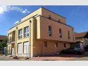 Wohnung zur Miete 2 Zimmer in Bollendorf - Ref. 4732937