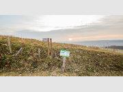 Grundstück zum Kauf in Wincheringen - Ref. 4056009