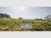 Grundstück zum Kauf in Wincheringen - Ref. 3308922