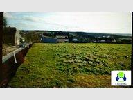 Terrain à vendre à Tarchamps - Réf. 4860060