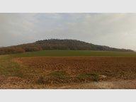 Terrain à vendre à Rettel - Réf. 3696015