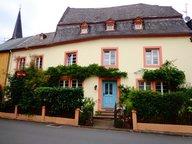 Renditeobjekt / Mehrfamilienhaus zum Kauf 12 Zimmer in Trier - Ref. 4848815