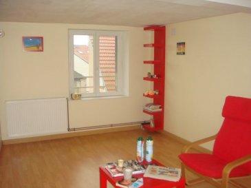 sarrebourg, centre ville, proche toutes commodités bel appartement F2 avec 1 chambre + 1 petite pièce. chauffage compris dans les charges