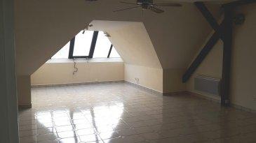 HAGONDANGE EN LISIERE DE FÔRET : bel F3 dans une résidence clôturée et arborée comprenant cuisine équipée, salon-séjour, 2 chambres, salle de bains, garage.