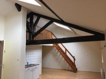comprenant cuisien ouverte sur pièce de vie, mezzanine, salle de bains, 2 chambres avec placards. entièrement rénové.