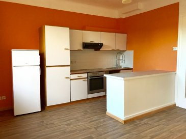 Louis Mathieu RE/MAX Partners, spécialiste de l'immobilier à Dudelange, vous propose à la location ce bel appartement lumineux, rénové en 2016, d'une superficie d'environ 71 m2 habitables. Il est situé au première étage d'un bâtiment de quatre appartements.  ?Il se compose de la manière suivante :   - Un hall d'entrée avec débarras - Une belle pièce à vivre séjour et cuisine ouverte de 23 m2 - Une chambre de 20 m2  - Une chambre de 19 m2 - Une salle de bain avec baignoire, vasque et WC  Cet appartement est complété par une cave et une buanderie commune.  L'appartement est situé Avenue Grande-Duchesse Charlotte donc proche de toutes les commodités.  Caution de trois mois de loyer.  Disponibilité immédiate.  N'hésitez pas à me contacter pour tous renseignements supplémentaires, photos supplémentaires ou programmer une visite.  Contact : Louis MATHIEU au 00 352 671 111 323 ou louis.mathieu@remax.lu