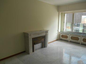 Bel Appartement enitèrement rénové, très clair, beaucoup de placards, accès au balcon de la cuisine et d'une chambre à coucher