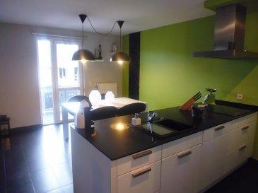 Magnifique appartement, situé dans rue très calme de la commune de Differdange-Fousbann.  Comprenant une tés belle cuisine équipé,living, une moderne salle de douche, une chambre a coucher,balcon spacieux,  cave, emplacement  voiture intérieur. Jardin comment  avec place pour le barbecue. Possibilité d'acheter avec les meubles. Absolument a visiter..........