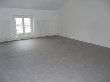 Appartement spacieux :  Entrée - WC - Cuisine - Grand Salon - 1 Grande chambre - Salle de bains - 1 pièce  Cellier  Chauffage au gaz