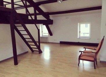 Bel appartement style loft offrant un bel espace à vivre avec cuisine ouverte,  mezzanine, sdb et 3 chambres. 100 m²