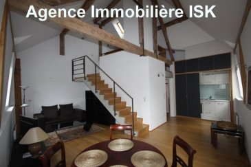 Très beau meublé moderne neuf Open Space de 75m2<br>- cuisine équipée et salle de douche<br>- au Centre Ville ( zone Piétonne)<br />Ref agence :916512