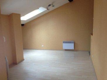 Laneuveville appt F1 bis . Laneuveville, appartement F1 bis de 33m² au 1er étage comprenant : 1 entrée, 1 salon séjour, 1 coin cuisine, 1 salle de bains avec WC. Disponible le 02/12/2016 DPE D. Loyer : 350 euro + Charges : 20 euro