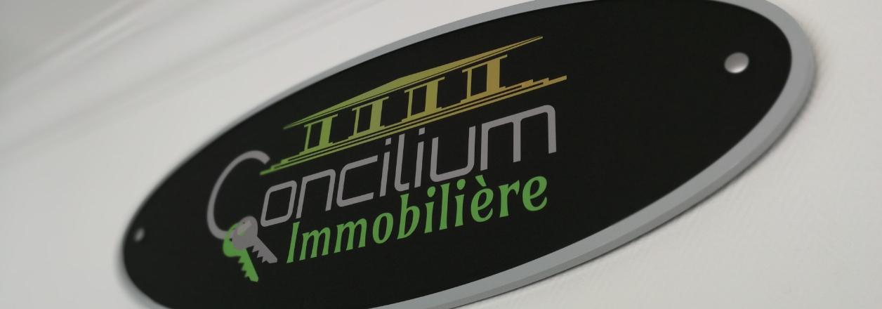 Concilium Immobilière - Differdange