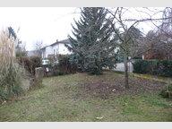 Appartement à louer F5 à Wettolsheim - Réf. 5095680