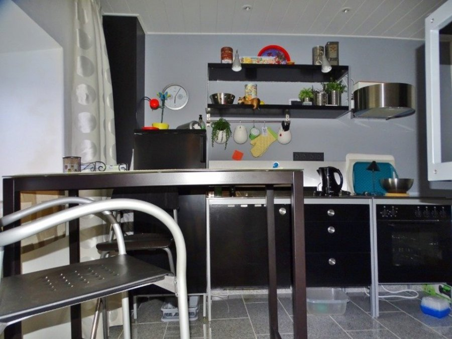 renditeobjekt kaufen 11 zimmer 205 m² waxweiler foto 4
