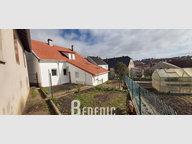 Maison à louer F5 à Etting - Réf. 7179264
