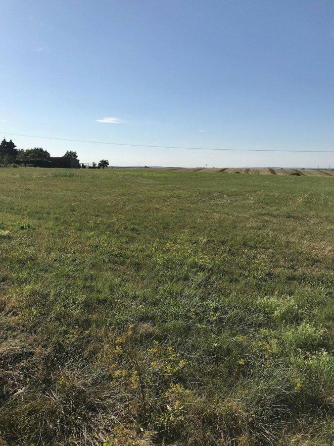acheter terrain constructible 0 pièce 0 m² dommary-baroncourt photo 3
