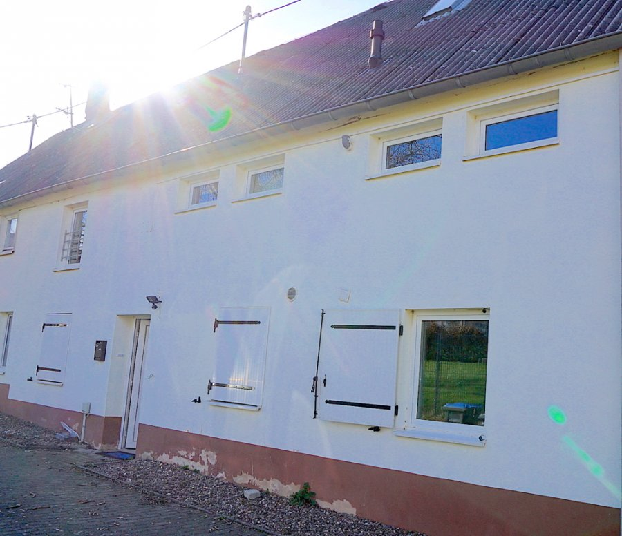 reihenhaus mieten 5 zimmer 160 m² fisch foto 3