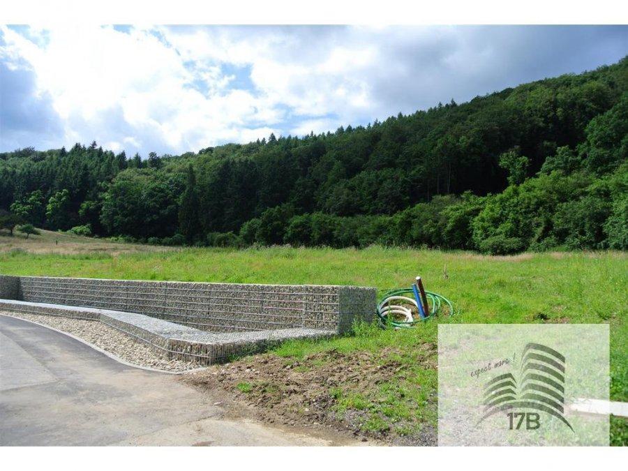 Terrain constructible à vendre à Echternach