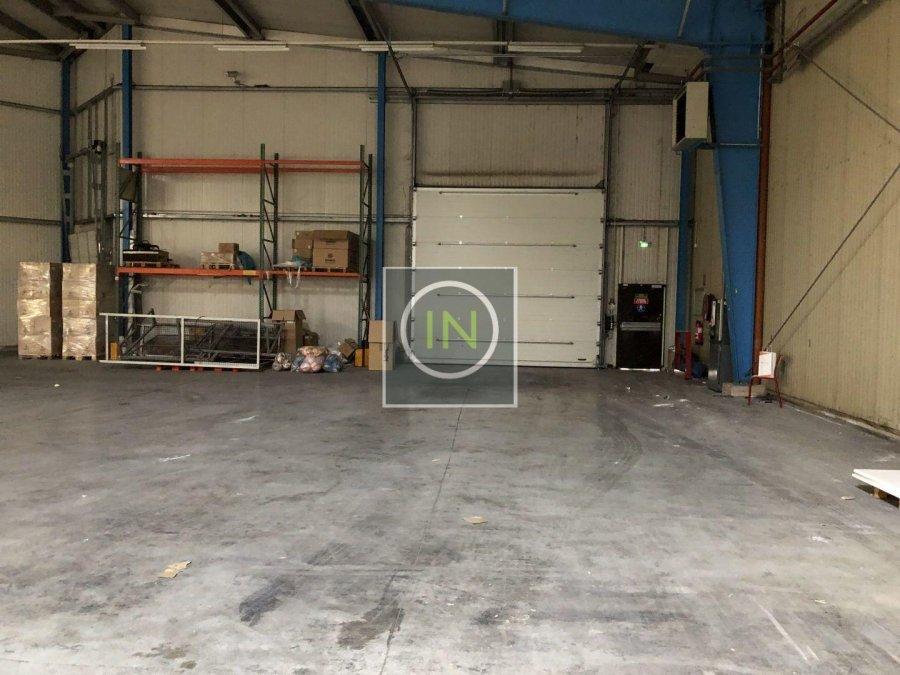 louer entrepôt 0 chambre 6112 m² foetz photo 7