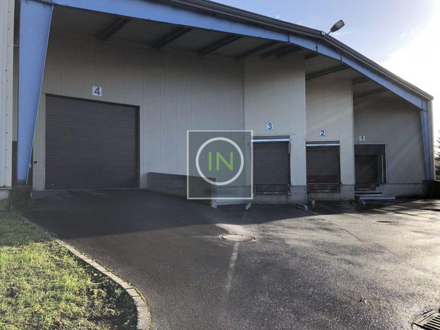 louer entrepôt 0 chambre 6112 m² foetz photo 1