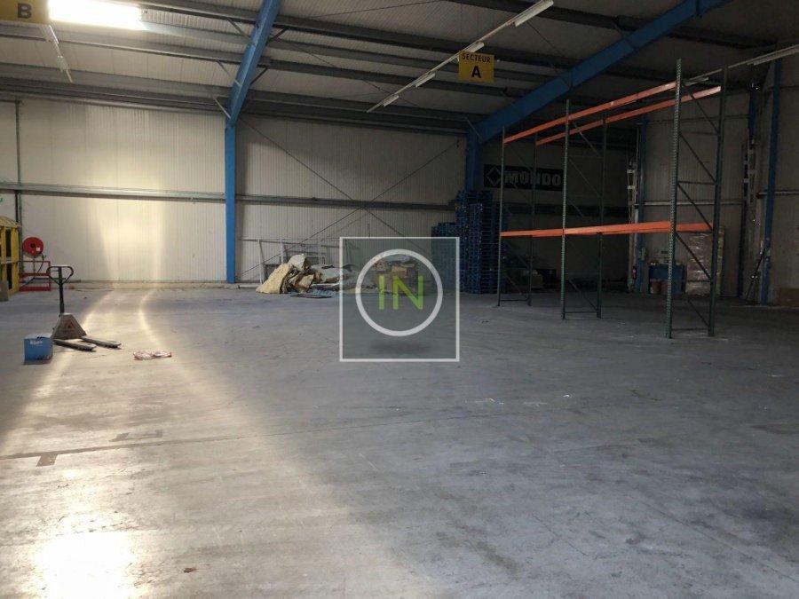 louer entrepôt 0 chambre 6112 m² foetz photo 6
