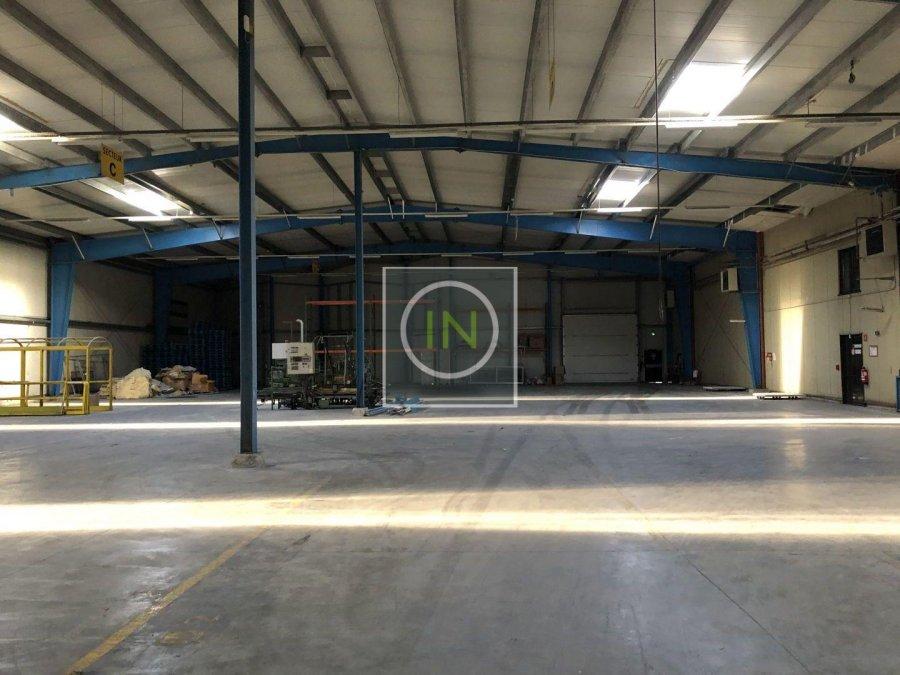louer entrepôt 0 chambre 6112 m² foetz photo 3