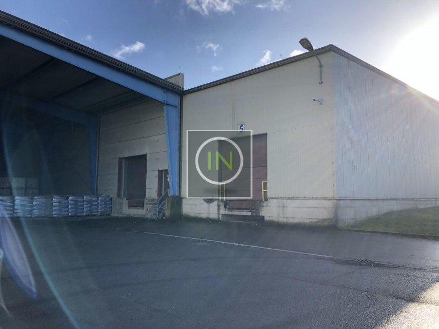 louer entrepôt 0 chambre 6112 m² foetz photo 2