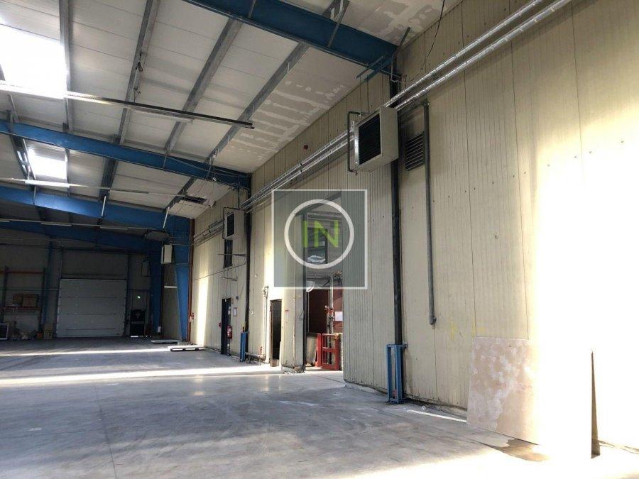 louer entrepôt 0 chambre 6112 m² foetz photo 5