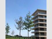 Appartement à louer 1 Chambre à Luxembourg-Gasperich - Réf. 6402352