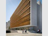 Bureau à louer à Luxembourg-Centre ville - Réf. 7198512