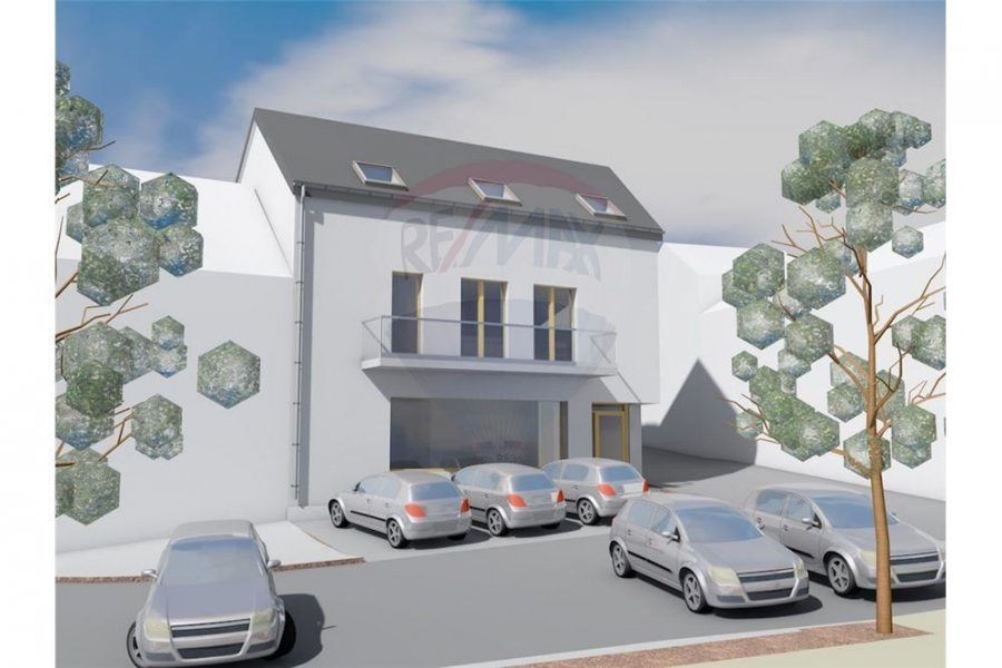 acheter terrain constructible 12 chambres 500 m² troisvierges photo 1