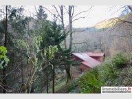 Maison à vendre 4 Chambres à Sainte-Marie-aux-Mines - Réf. 6623296
