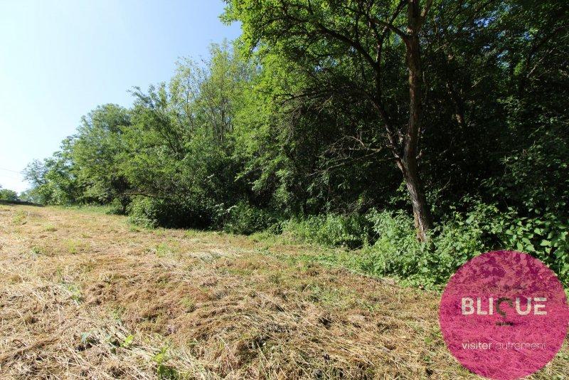 acheter terrain constructible 0 pièce 0 m² parey-saint-césaire photo 5