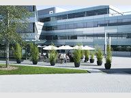 Bureau à louer à Bertrange (Bourmicht) - Réf. 7208000