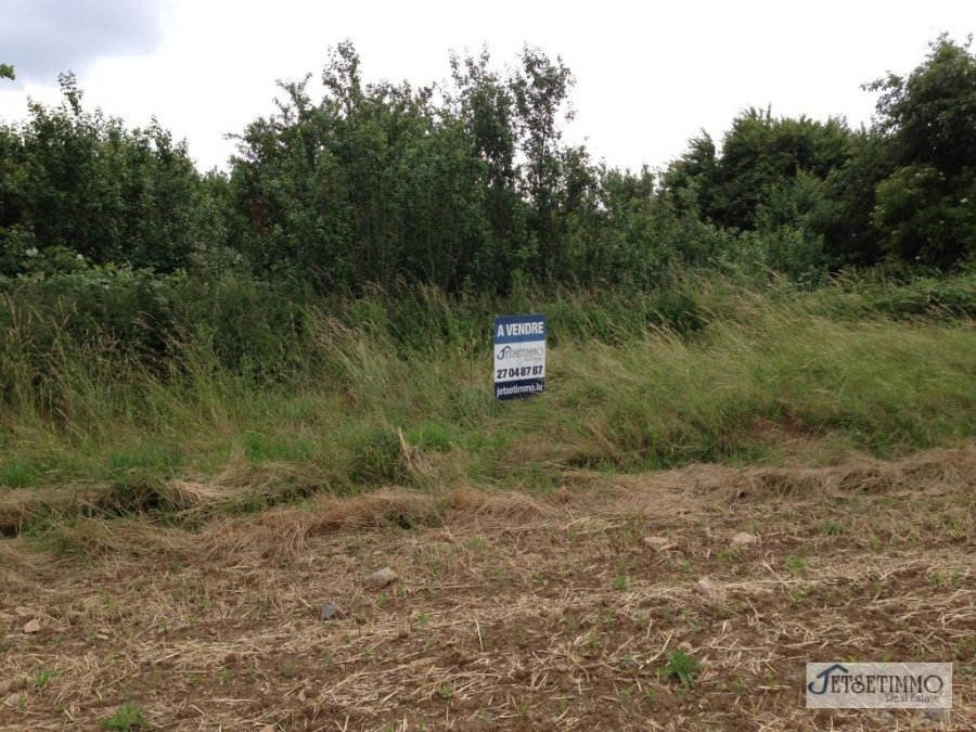 non building land for buy 0 bedroom 4000 m² beaufort photo 1
