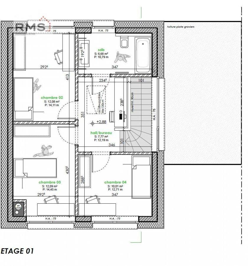 acheter maison 4 chambres 175 m² ettelbruck photo 5